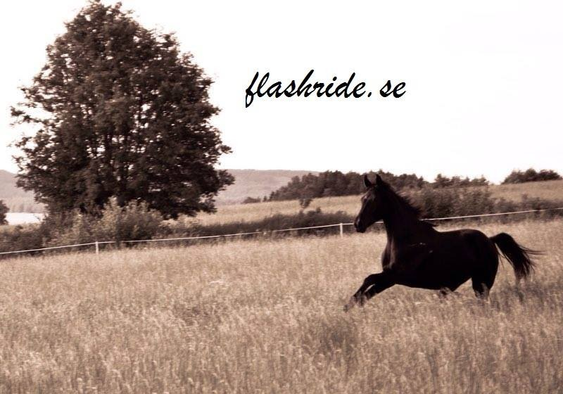 Flashride.se